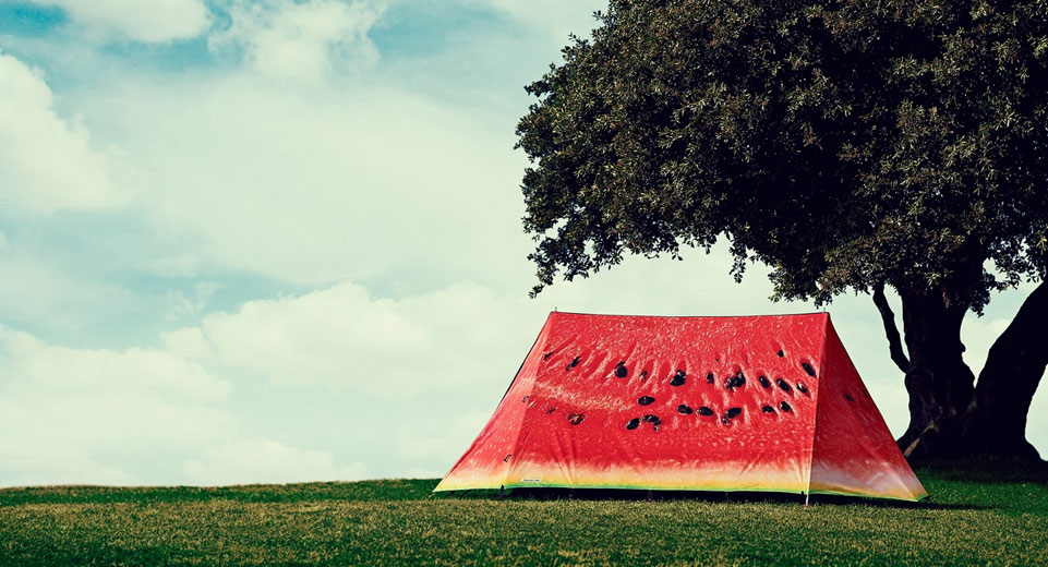 FieldCandy Melon